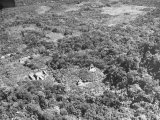An Aerial View of the Ancient Mayan City of Palenque