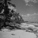 Shoreline at Bikini Atoll on Day of Atomic Bomb Test