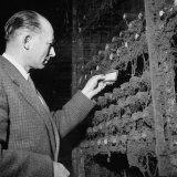 Director Yoes Kressmann  Looking at the Chateau Lafite Kept for His Own Personal Consumption