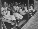 St Louis Browns Players Sitting in the Dug Out During a Game