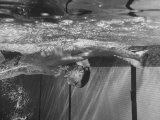 Swimmer Dick Cleveland Competing During a National Amateur Athletic Union Swim Meet