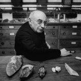 Leading Authority on Paleolithic Art Abbe Henri Breuil