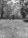 British-Born Author PG Wodehouse Walking into Wooded Area of His Vast Property with His Boxer