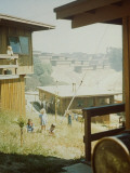 Children Playing in Backyard in Government Housing Project for Bechtel-Managed Shipyards Workers