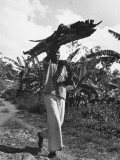 A View of a Man Carrying Crops from a Story Concerning Jamaica