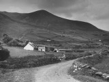 A View Showing a Hillside on Dingle Peninsula  Kerry County  Ireland
