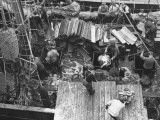 Men Unloading the Grimsby Trawler at Number Four Fish Dock
