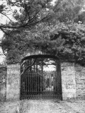 Entrance to Laragh Castle  Home of Sean Macbride's Sister