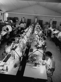 People Working in the Texas Instruments Plant