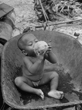 2 Year Old Drinking Coconut