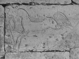 Carving of a Horse on Wall of Temple of Ramses II at Abydos