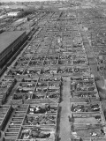 Aerial View of Pens Containing Beef Cattle at the Union Stockyards