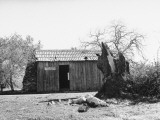 Exterior of Mark Twain&#39;s Cabin on Jackass Hill
