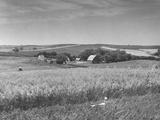 A Farm in Iowa