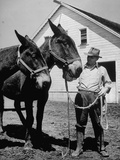 Farmer J Vivian Truman  Brother of Harry Truman  Working with a Pair of Mules