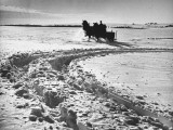 A Man Running His Horse Driven Wagon Through the Thick Snow