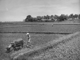 Farmers Working in Fields