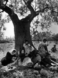 Italian Women in Southern Italy Resting in Olive Grove