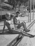 Actor Cornel Wilde and His Wife  Patricia  Sitting by the Pool