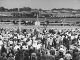 A View of the Preakness Dog Race on the Pimlico Race Tracks