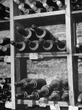Dust Covered French Vintage Champagnes Lying on Racks in the Wine Cellar