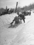 A View of a Bobsled Race