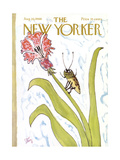 The New Yorker Cover - August 20  1966