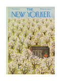 The New Yorker Cover - May 19  1973