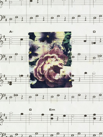 Flowers and Music Stretched Canvas Print