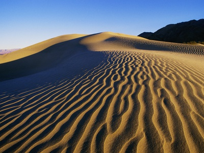 Sand Dunes in Death Valley Stretched Canvas Print