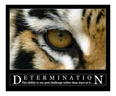 Determination Fat Kid