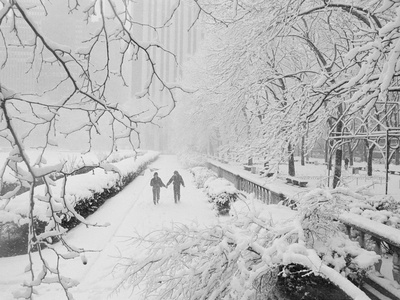 Couple Walking Through Park in Snow Stretched Canvas Print