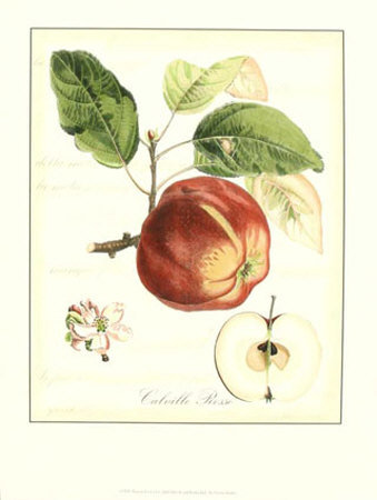 Tuscan Fruits I Print