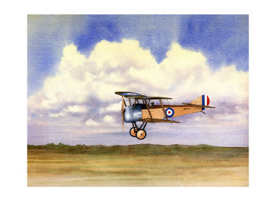 sopwith pup giclee print  zoom  view in room