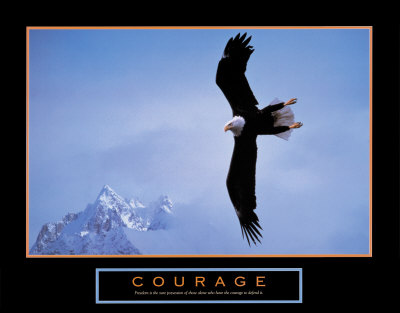 Courage: Bald Eagle Print at Art.