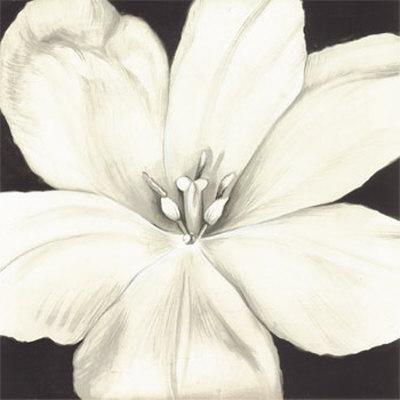 Print Flower on White Flower Print At Art Co Uk
