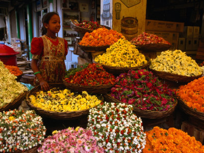 Flower Seller at the New Market., Kolkata, West Bengal, India Stretched Canvas Print