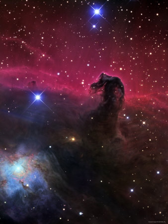 The Horsehead Nebula Stretched Canvas Print