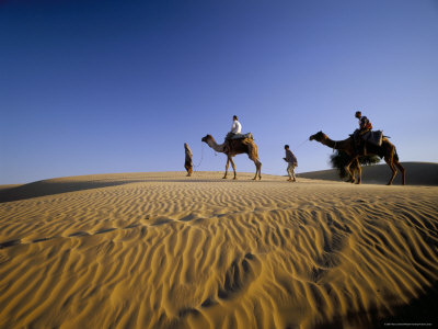 Caravan of People and Camels in the Thar Desert, Rajasthan State ...