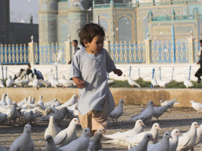 Child Chasing the Famous White Pigeons, Mazar-I-Sharif, Afghanistan Stretched Canvas Print