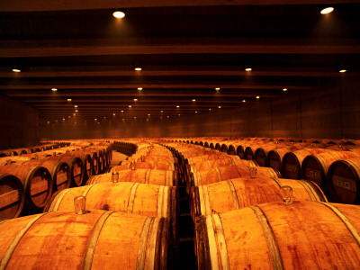 Barrel Room at Opus One, Napa Valley, California Stretched Canvas Print