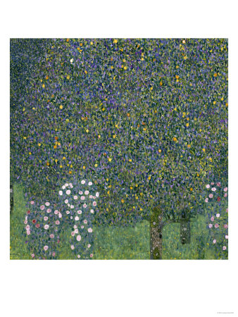 Rose Bushes Under Trees, c.1905 Giclee Print. zoom. view in room