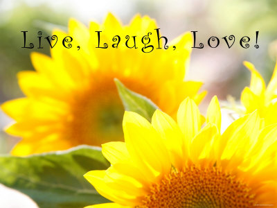 Live Laugh Love: Sunflower Stretched Canvas Print