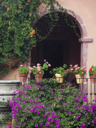 Bougainvillea and Geranium Pots on Wall in Courtyard, San Miguel De Allende, Mexico Stretched Canvas Print