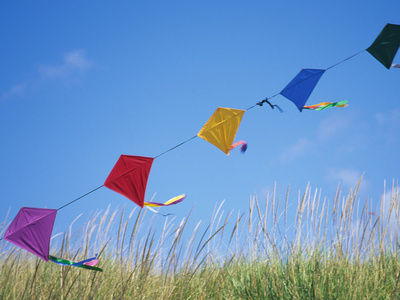 Kites on the Beach, Long Beach, Washington, USA Stretched Canvas Print
