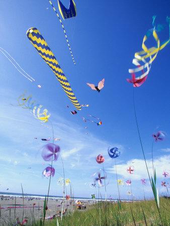 Kites on the Beach, Long Beach, Washington, USA Stretched Canvas Print