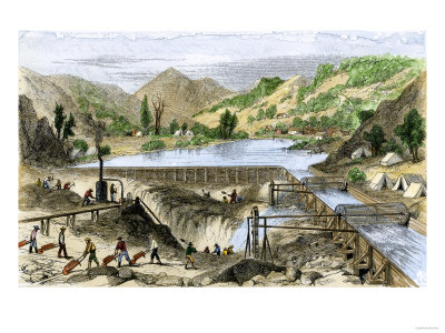 the gold rush california. the California Gold Rush,