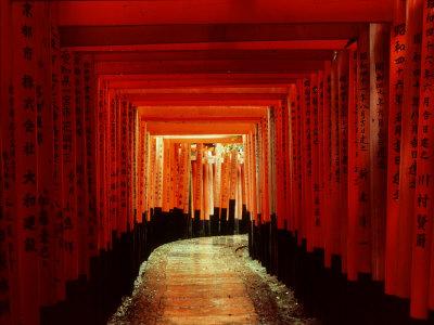 Tunnel of Torii-Arches, Fushimi Inari Shrine, Kyoto, Japan Stretched Canvas Print