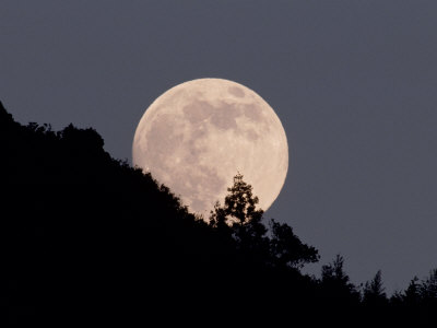 Full Moon Stretched Canvas Print