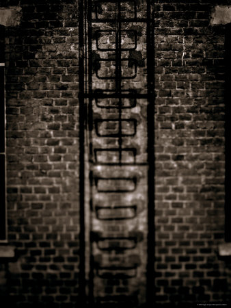Study of a Ladder Stretched Canvas Print